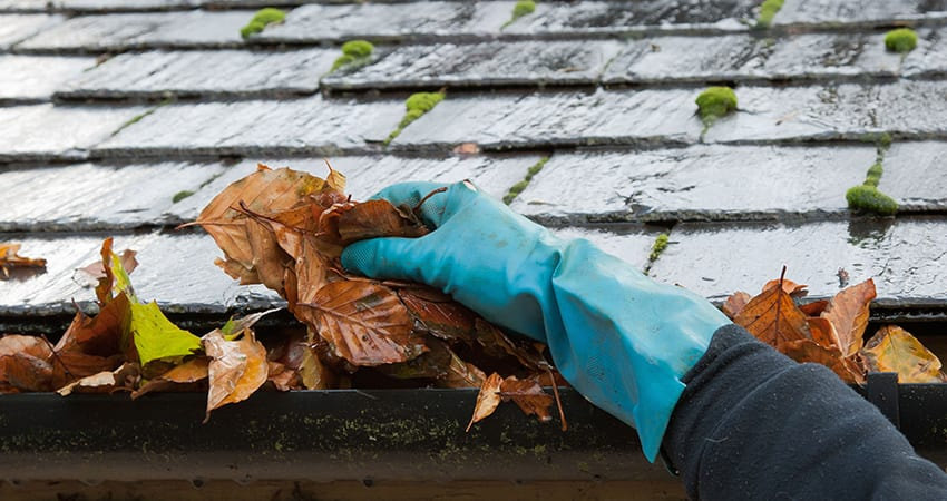 prevent-gutter-cleaning