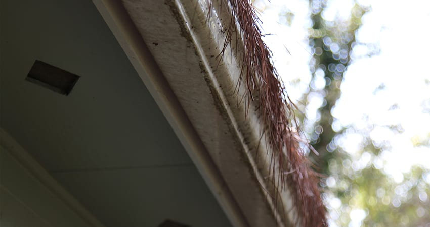 prevent-gutter-dirt-and-streaking